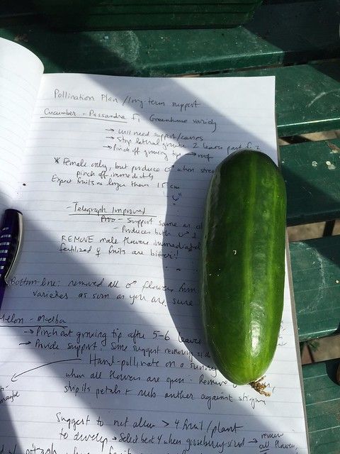 Cuke Notes