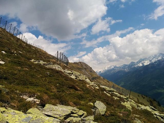 Blick auf den Schönberg-Gipfel mit dem Gipfelkreuz