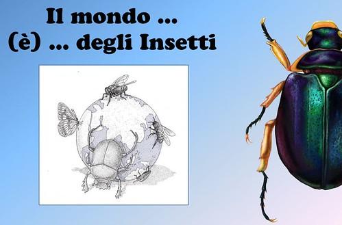 una miriade di insetti