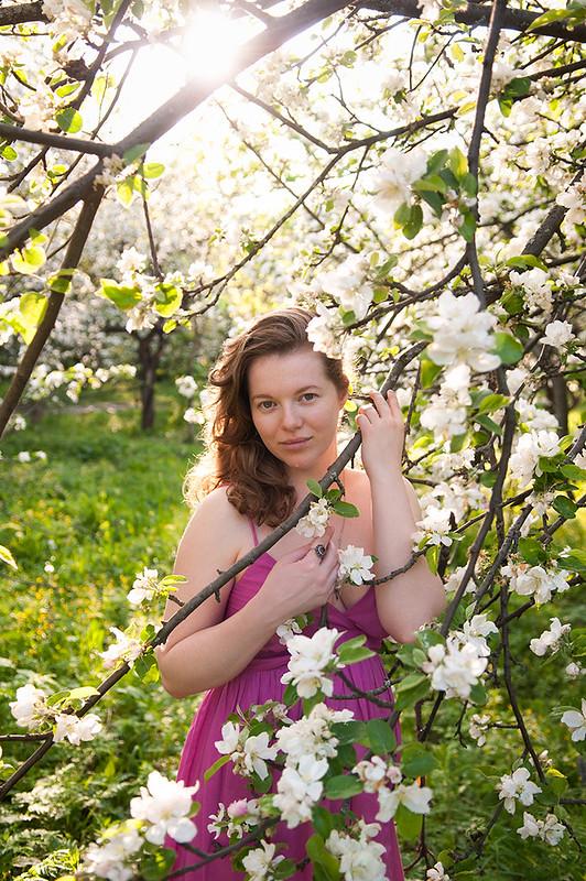 spring flowers apple blossom