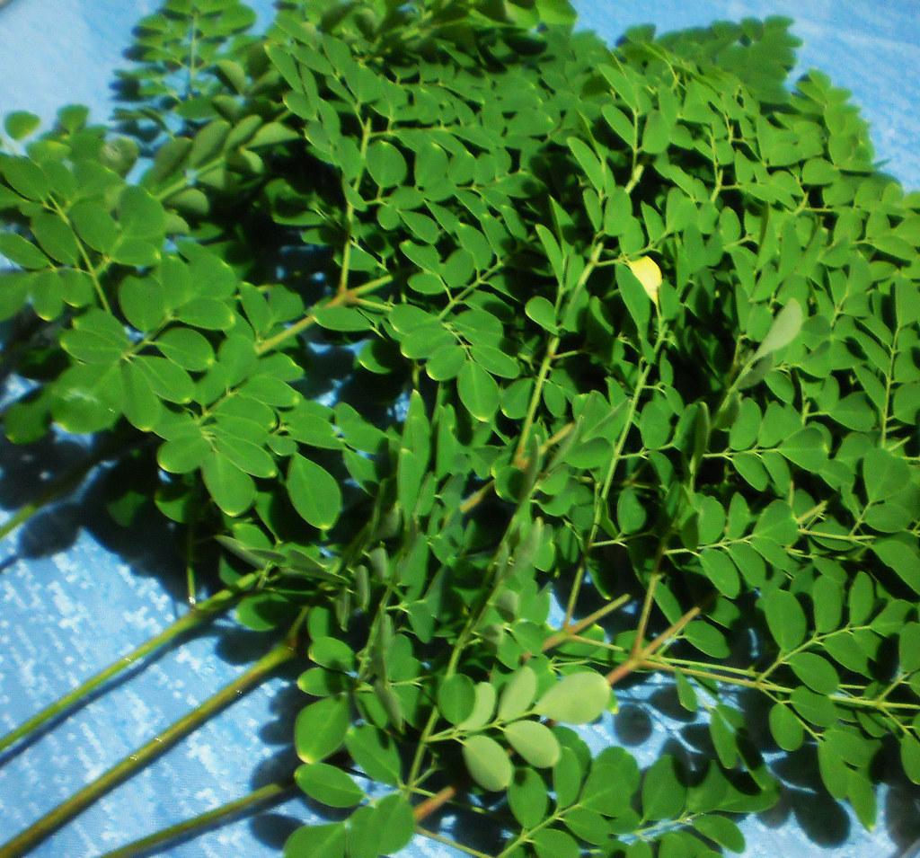 Turmeric / Luyang Dilaw Health Benefits