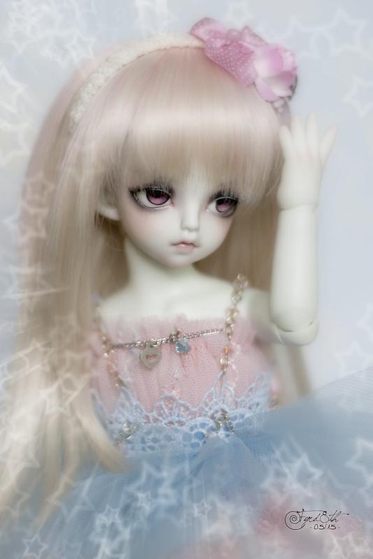 Blue Cotton 01