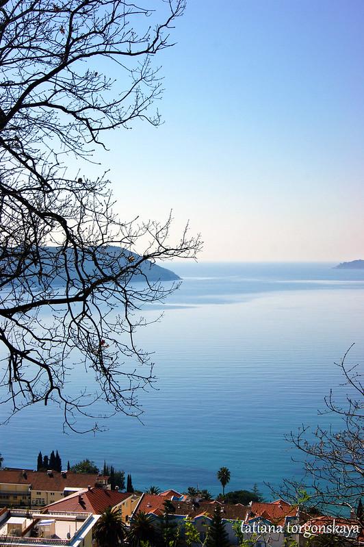 Море с обзорной площадки