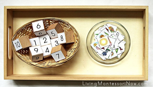 Summer Numbers and Counters Tray