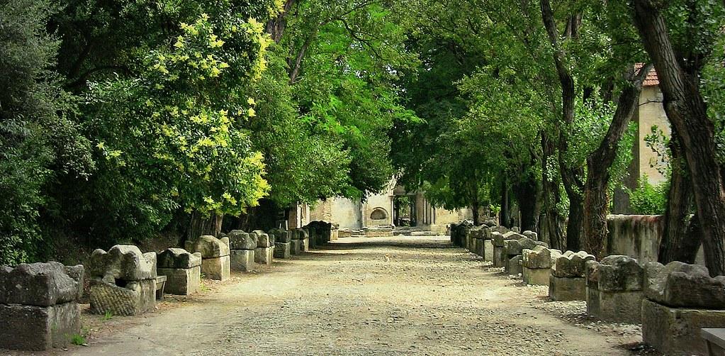 FRANCE - Provence , Arles, Nekropole Alyscamps,  500 Meter lange Platanen-Allee mit antiken Steinsarkophagen , 12752
