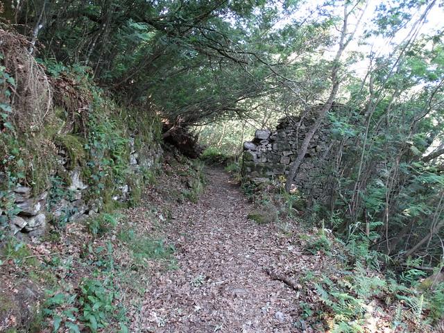 Ruinas en el PR-G 181 Ruta de Cibrisqueiros a San Cosmede