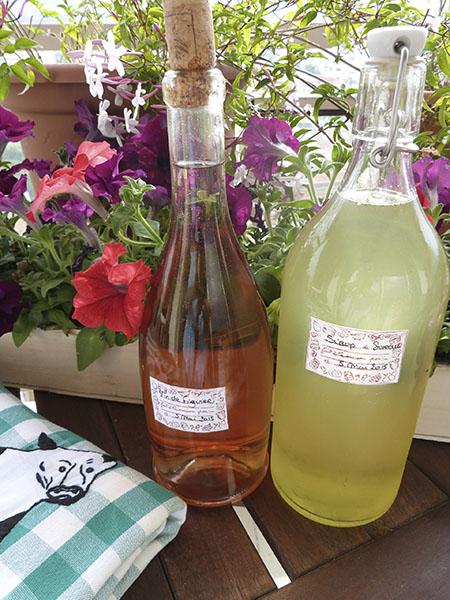 vin de figue et sirop de sureau