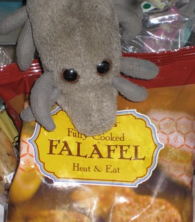 Eat the falafel, not the mite