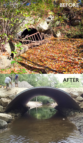Replacing an undersized culvert with a much larger, open-bottom arch enables both fish and floodwater to pass more easily under Hale Hill Road. (photos: Brett Amy Thelen & Gabe Bolin)