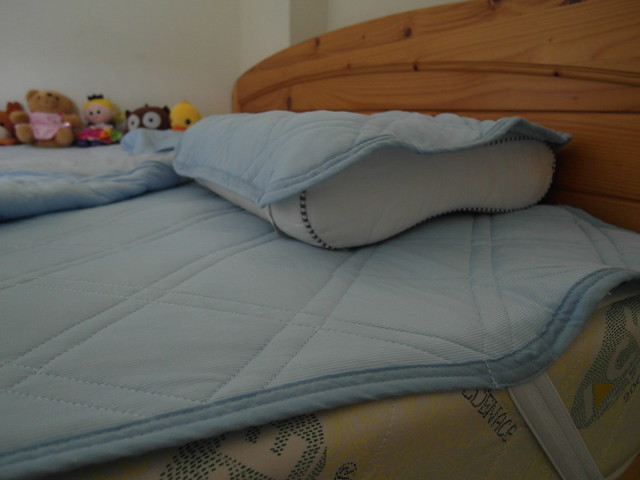 枕頭保潔墊與床舖保潔墊,不會完全包覆喔!所以後來我還是有加枕套床包@N Cool接觸涼感系列寢具