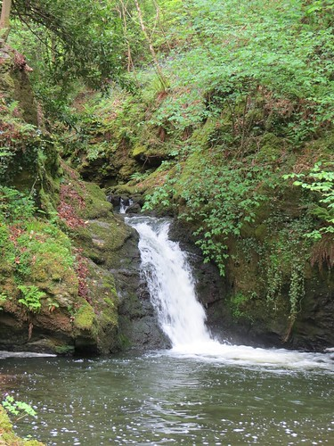 Waterfall on the Afon Cadnant539