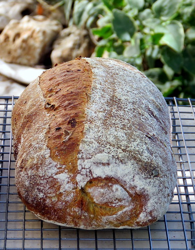 Seeded Turmeric & Leek Levain