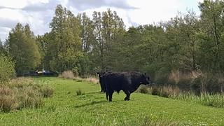 2015-0507 05 Muiderberg-Bussum