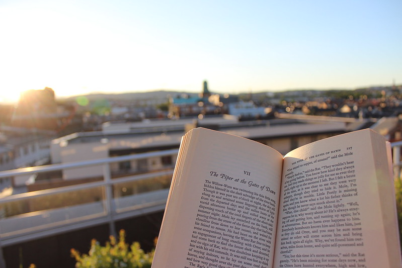 Rooftop reading, Et dryss kanel