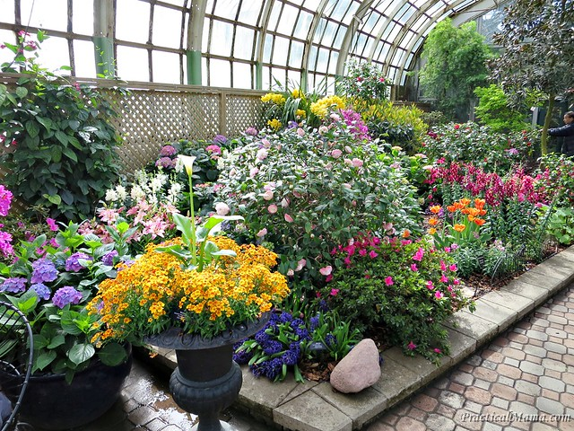 LincolnParkConservatory14