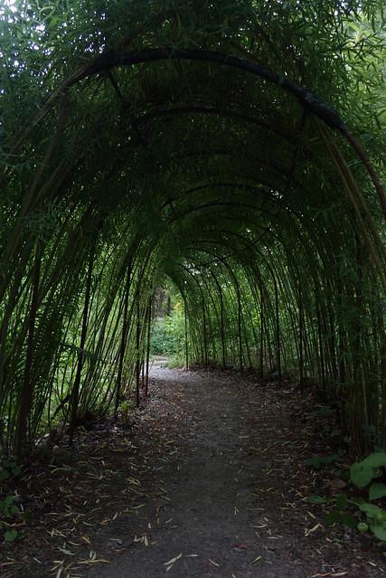 innis woods park