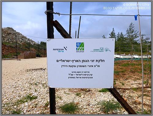 מחקר על היין בארץ ישראל