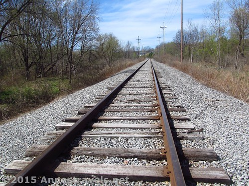 The railroad tracks we crossed along the Auburn Trail, Victor, New York