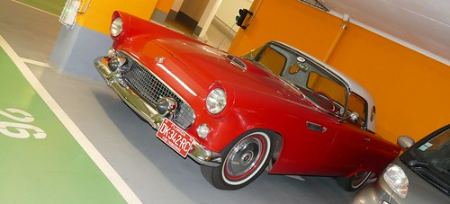 "Thunderbird 1955 ""Sugar Baby Love"" 28189905496_f79d62fa59"