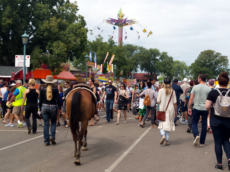 a woman walking a horse down a crowded street, with the Sky Flyer swings in the distance