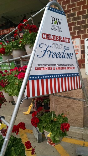 Patriotic Sign at the Home Depot