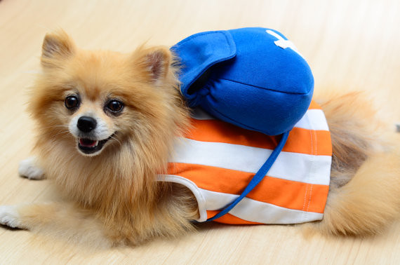 Chopper One Piece Dog Cosplay