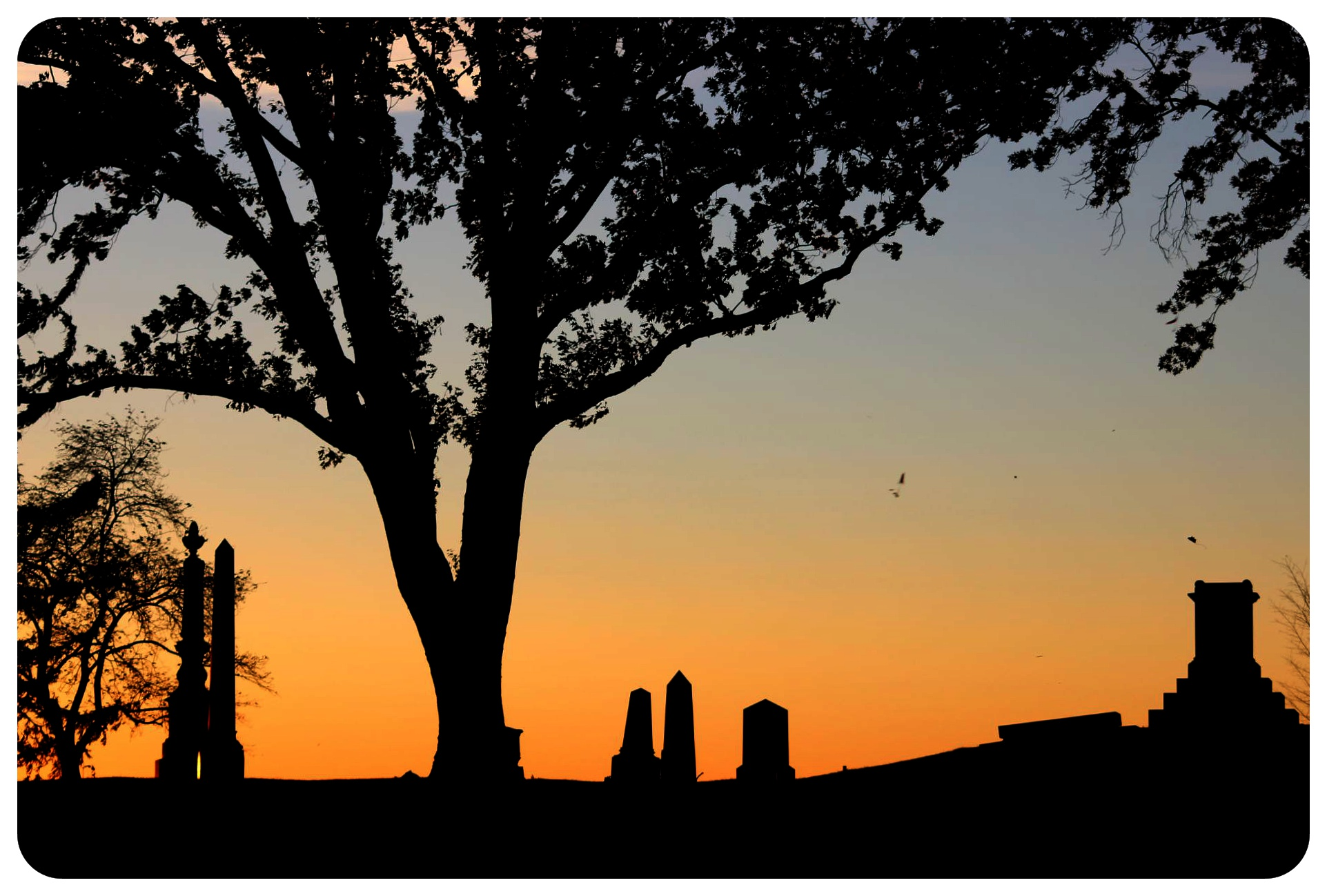 greenwood cemetery sunset obelisks