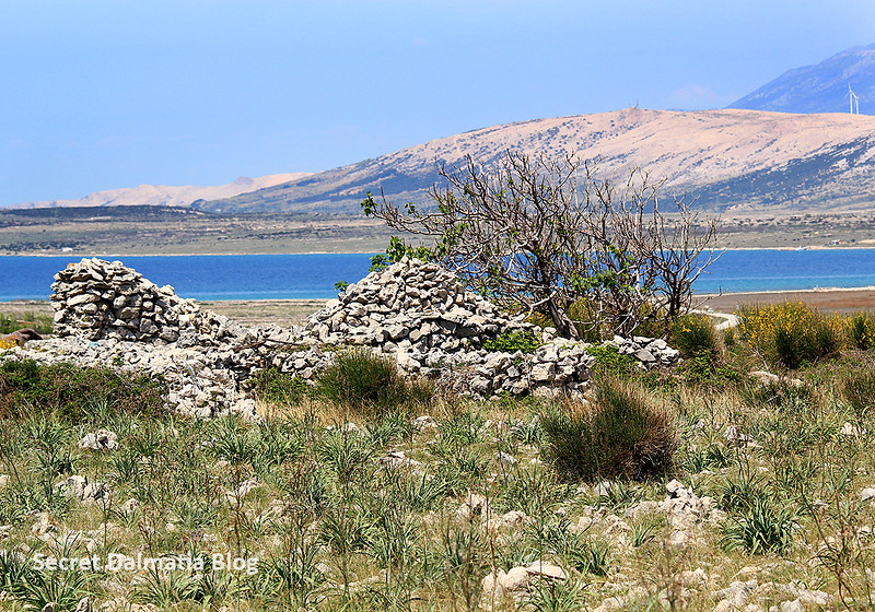 On the road to Povljana. Typical motives of Pag island