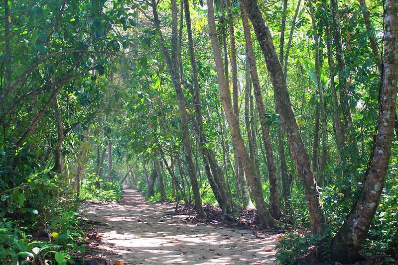Nationalpark in Costa Rica