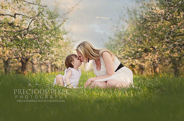 photographer, monroe Michigan Precious Pixel Photogrpahy, family photo, portraite photographer southeast mi 04
