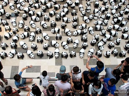 Panda Siege