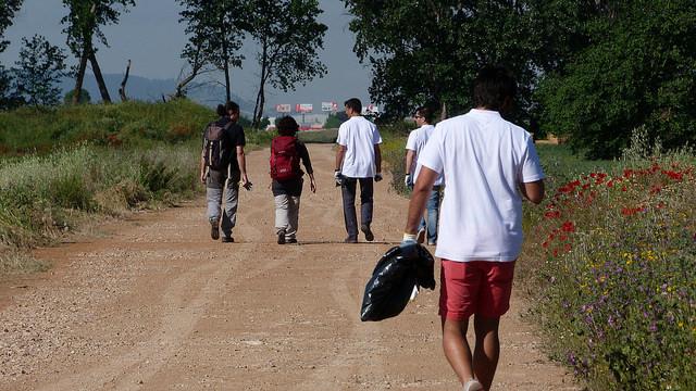 Foto Camino