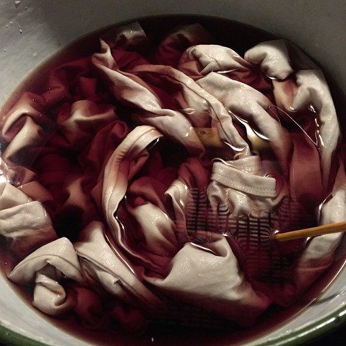 dyeing with reed plants