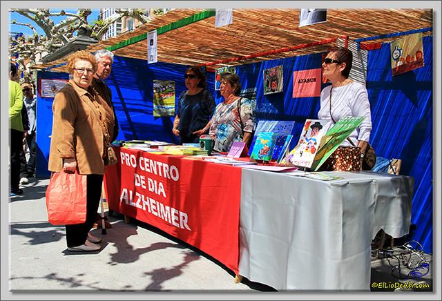 Feria de Asociaciones en Briviesca (7)