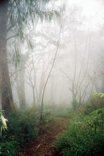mt agung hike