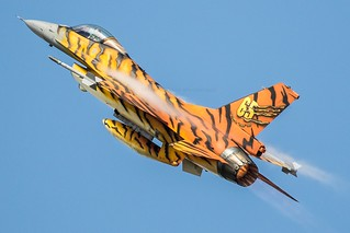 Hear the tiger roar | by Nick Collins Photography, Thanks for 3.6 million v