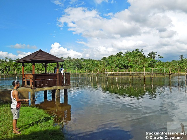7 Caliraya Mountain Spring Marina Resort - Fishing Experience