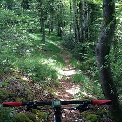 JuraTrails #lucelle #lesordons #jura #delemont #mtb #vtt #mountainbiking #specialized #camber_expert_evo