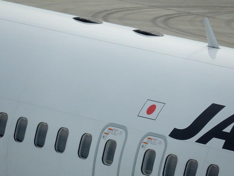 JAL SKY Wi-Fi 用アンテナ