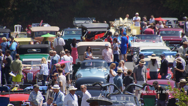 Greystone Mansion Concours d'Elegance 2015