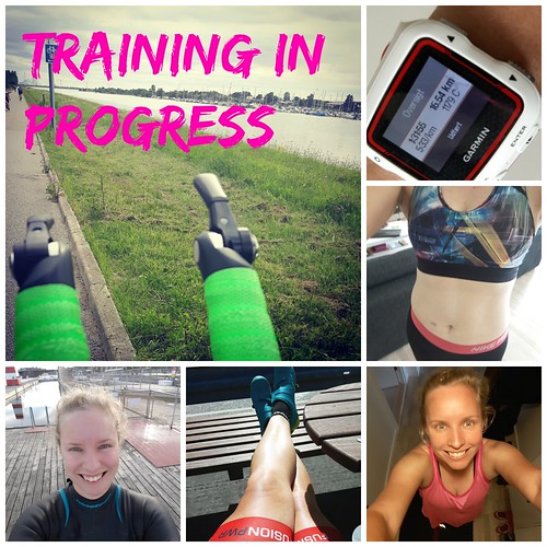 traininginprogress | by Lioness2720