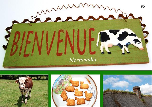 Bienvenue Normandie - normannische Kühe, Butter, Käse, Sahne ... Fotos und Collagen: Brigitte Stolle