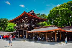 Meiji Jingū Shrine - Shibuya Tokyo Japan
