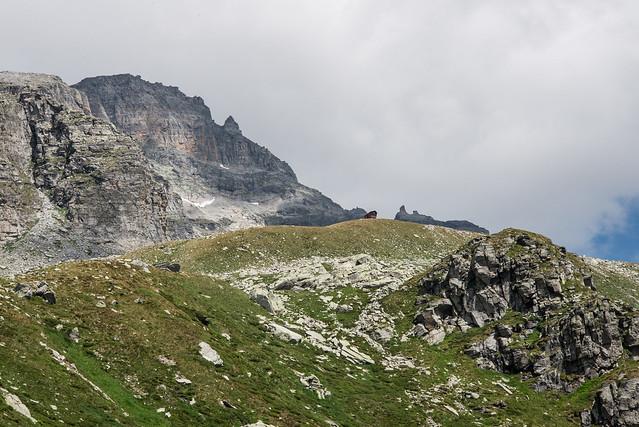 Bivacco della Conca delle Caldaie - Alpe Veglia