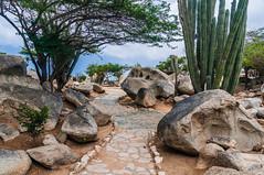 LNBatides_20171004_Aruba-Vacation_13861.jpg