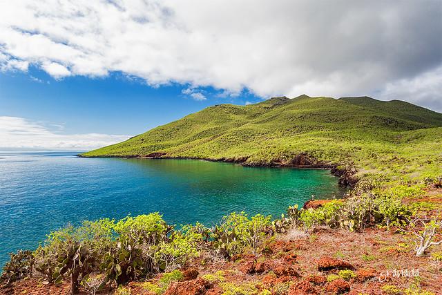 Rabida Island, Galapagos Islands